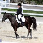 CEA Dressage Competition Bermuda Feb 26 2017 (6)