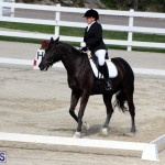 CEA Dressage Competition Bermuda Feb 26 2017 (7)