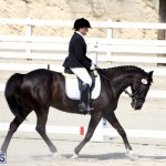 CEA Dressage Competition Bermuda Feb 26 2017 (8)