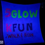 Earth Hour Bermuda, March 25 2017-40
