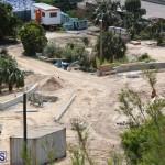 Horseshoe Bay Beach work Bermuda march 16 2017 (14)