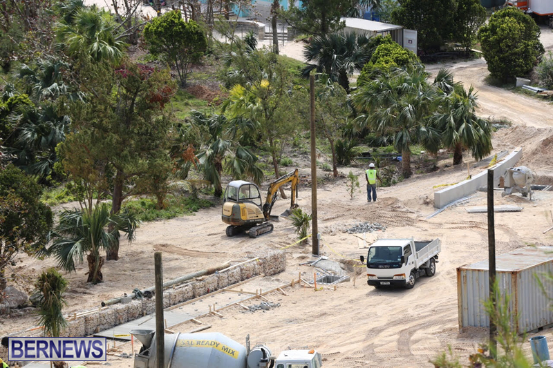 Horseshoe-Bay-Beach-work-Bermuda-march-16-2017-9