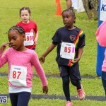 KPMG Round The Grounds Bermuda, March 12 2017-65