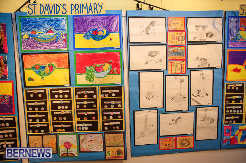 Primary-Schools-Art-Exhibition-Bermuda-March-17-2017-103