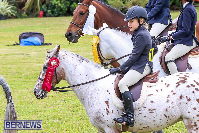 RES-Spring-Horse-Show-Series-Bermuda-March-11-2017-11