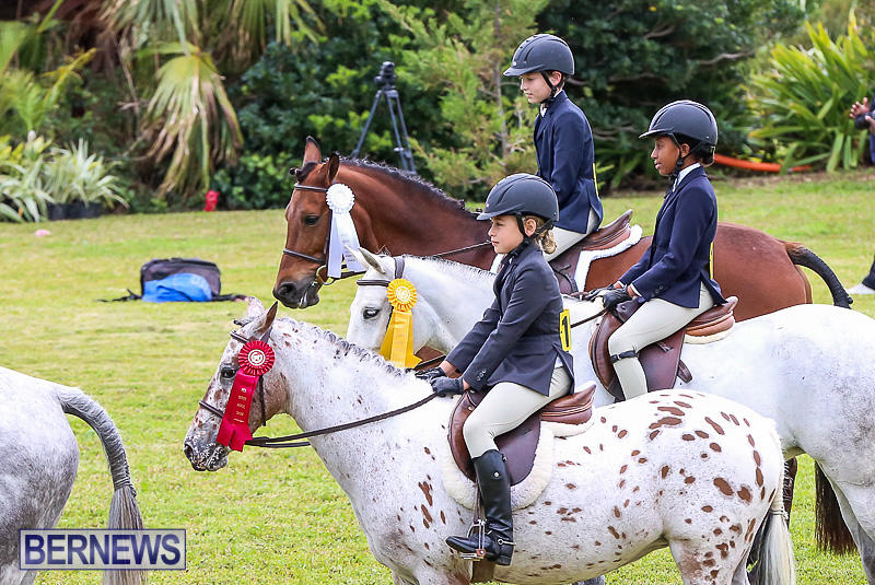 RES-Spring-Horse-Show-Series-Bermuda-March-11-2017-12