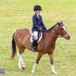 RES Spring Horse Show Series Bermuda, March 11 2017-14