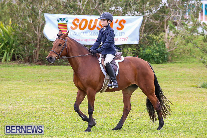 RES-Spring-Horse-Show-Series-Bermuda-March-11-2017-15
