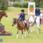 RES Spring Horse Show Series Bermuda, March 11 2017-17