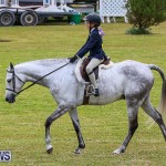 RES Spring Horse Show Series Bermuda, March 11 2017-2