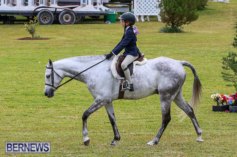 RES-Spring-Horse-Show-Series-Bermuda-March-11-2017-2