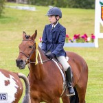 RES Spring Horse Show Series Bermuda, March 11 2017-22