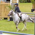RES Spring Horse Show Series Bermuda, March 11 2017-23