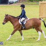 RES Spring Horse Show Series Bermuda, March 11 2017-24