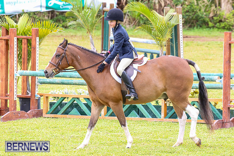 RES-Spring-Horse-Show-Series-Bermuda-March-11-2017-27
