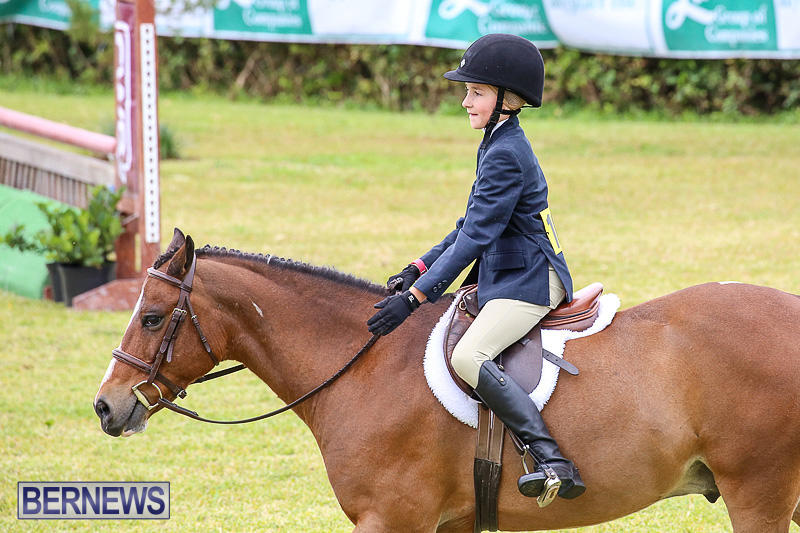 RES-Spring-Horse-Show-Series-Bermuda-March-11-2017-28