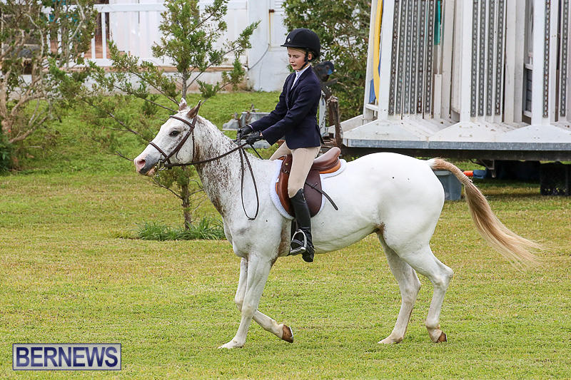 RES-Spring-Horse-Show-Series-Bermuda-March-11-2017-29
