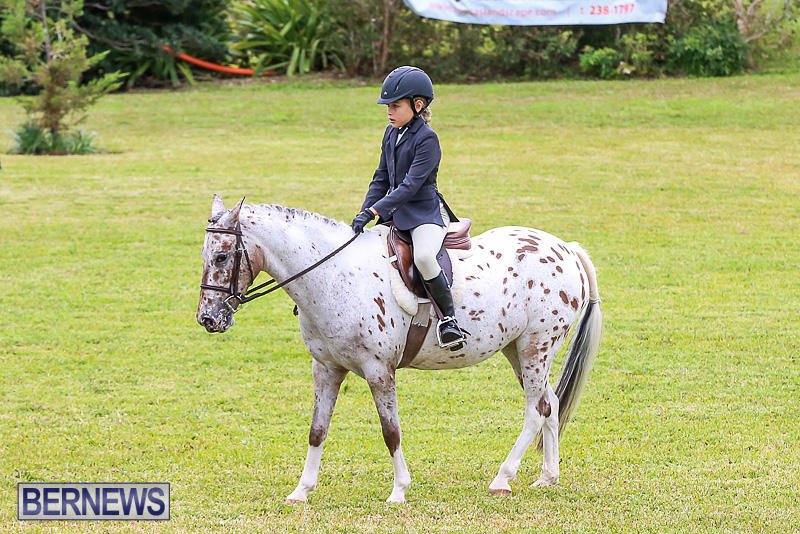 RES-Spring-Horse-Show-Series-Bermuda-March-11-2017-3