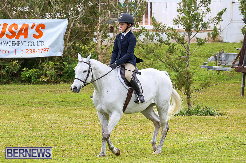 RES-Spring-Horse-Show-Series-Bermuda-March-11-2017-31