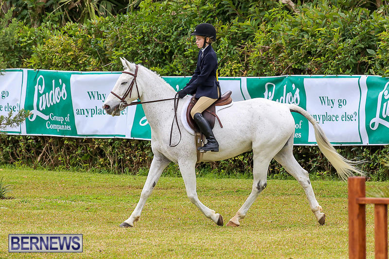 RES-Spring-Horse-Show-Series-Bermuda-March-11-2017-33
