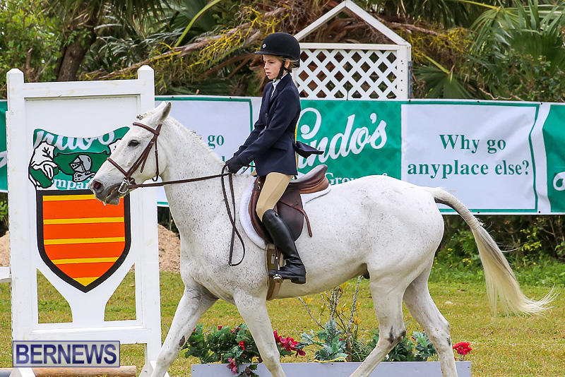 RES-Spring-Horse-Show-Series-Bermuda-March-11-2017-34