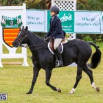 RES Spring Horse Show Series Bermuda, March 11 2017-35