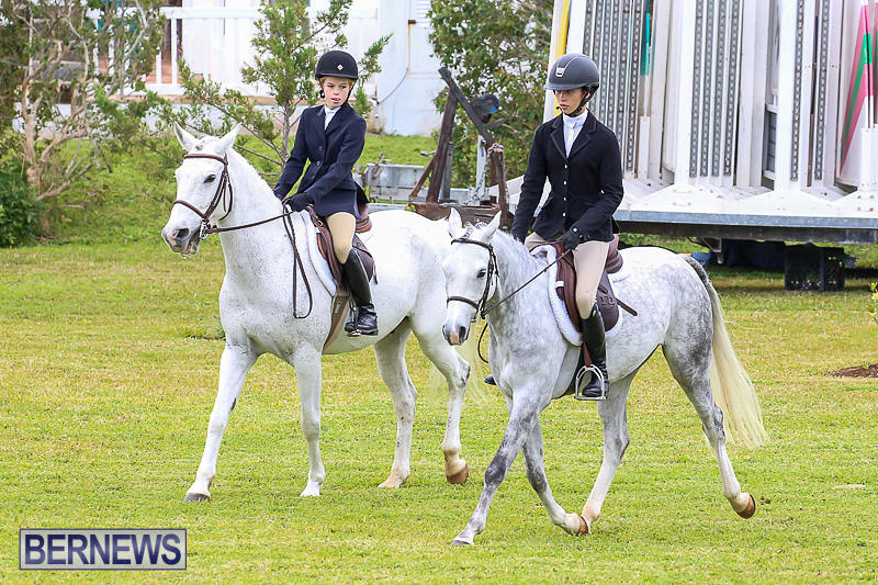 RES-Spring-Horse-Show-Series-Bermuda-March-11-2017-38