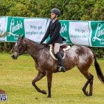 RES Spring Horse Show Series Bermuda, March 11 2017-41