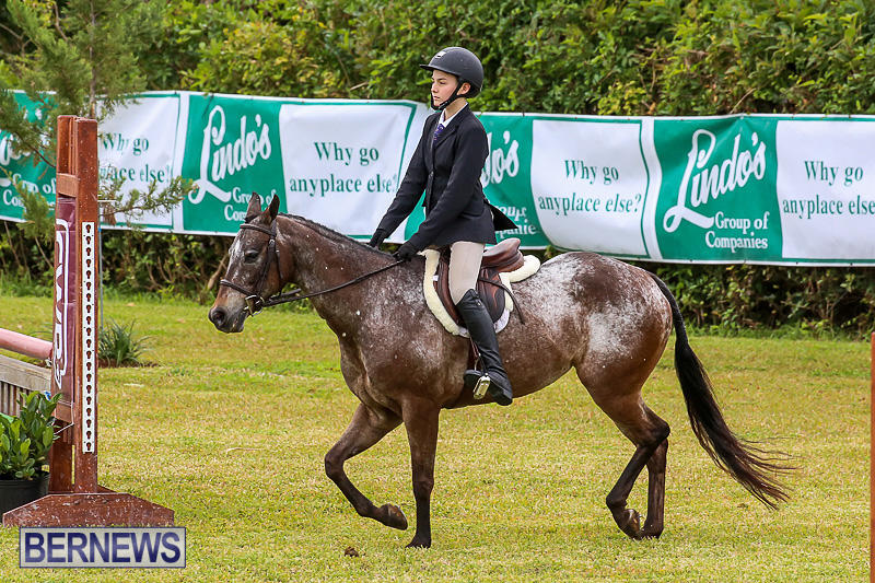 RES-Spring-Horse-Show-Series-Bermuda-March-11-2017-41