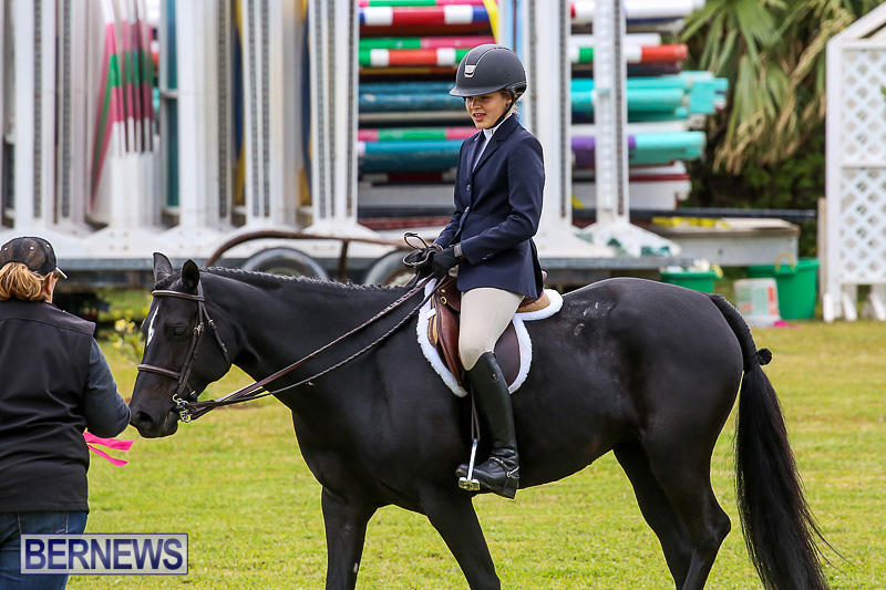 RES-Spring-Horse-Show-Series-Bermuda-March-11-2017-44