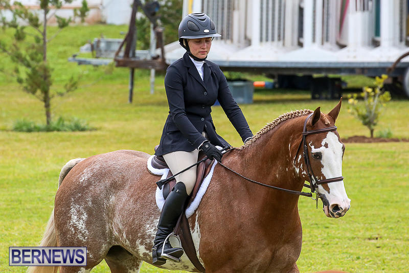 RES-Spring-Horse-Show-Series-Bermuda-March-11-2017-46