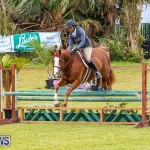 RES Spring Horse Show Series Bermuda, March 11 2017-49