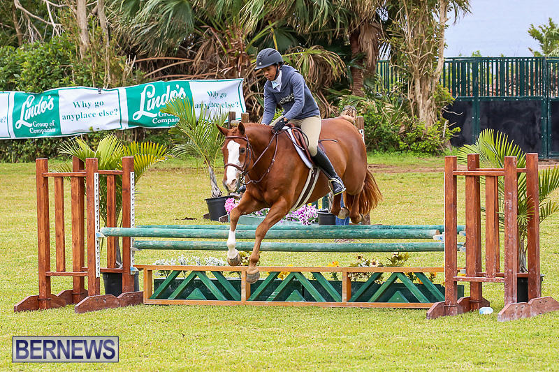 RES-Spring-Horse-Show-Series-Bermuda-March-11-2017-49