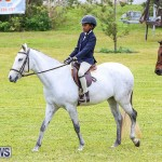 RES Spring Horse Show Series Bermuda, March 11 2017-5