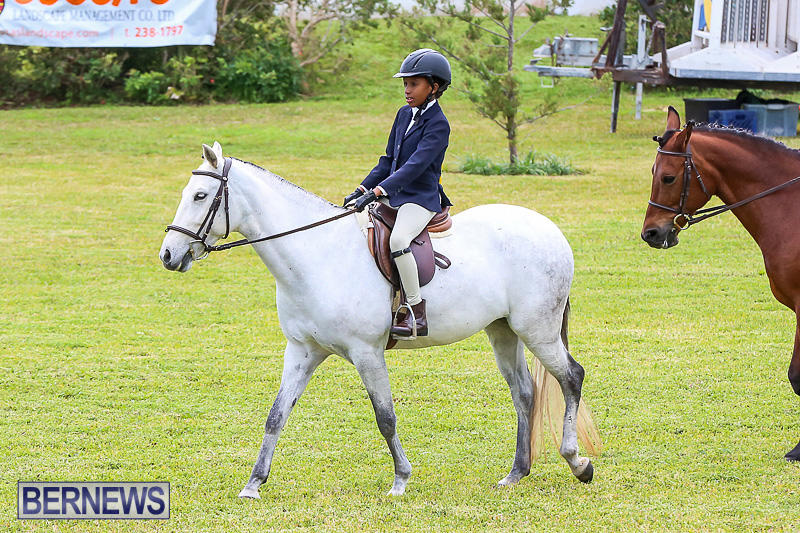 RES-Spring-Horse-Show-Series-Bermuda-March-11-2017-5