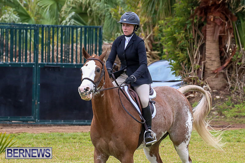 RES-Spring-Horse-Show-Series-Bermuda-March-11-2017-52