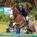 RES Spring Horse Show Series Bermuda, March 11 2017-53