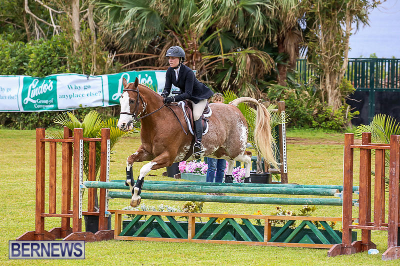 RES-Spring-Horse-Show-Series-Bermuda-March-11-2017-54