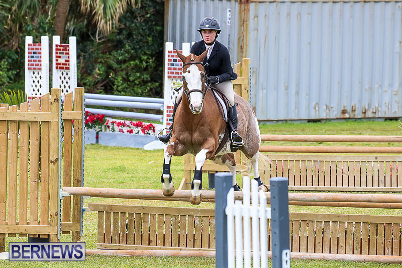 RES-Spring-Horse-Show-Series-Bermuda-March-11-2017-57