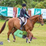 RES Spring Horse Show Series Bermuda, March 11 2017-58