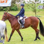 RES Spring Horse Show Series Bermuda, March 11 2017-7