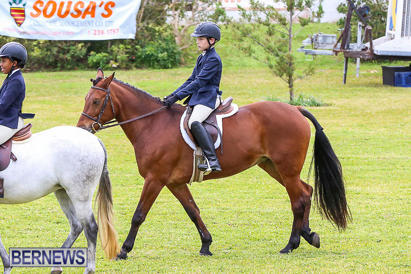 RES-Spring-Horse-Show-Series-Bermuda-March-11-2017-7