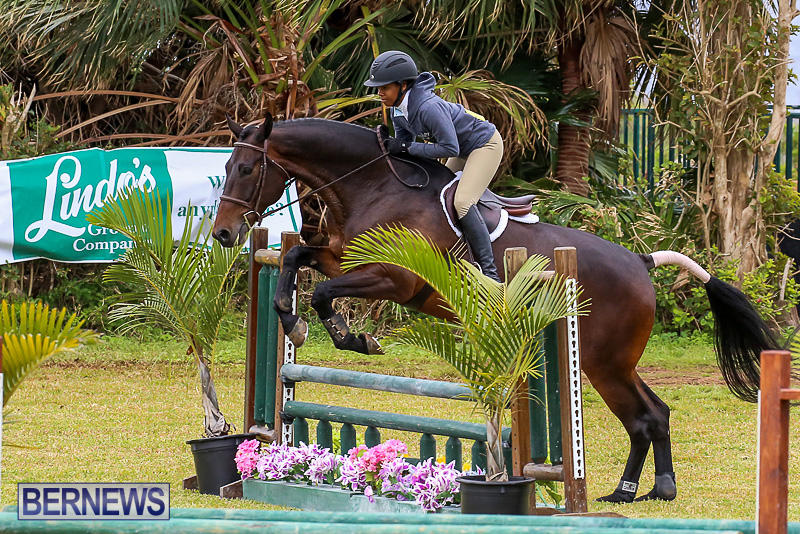 RES-Spring-Horse-Show-Series-Bermuda-March-11-2017-79