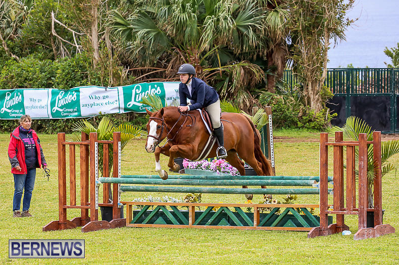 RES-Spring-Horse-Show-Series-Bermuda-March-11-2017-84