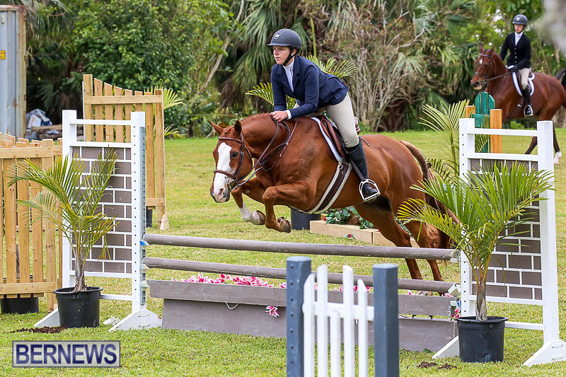 RES-Spring-Horse-Show-Series-Bermuda-March-11-2017-86