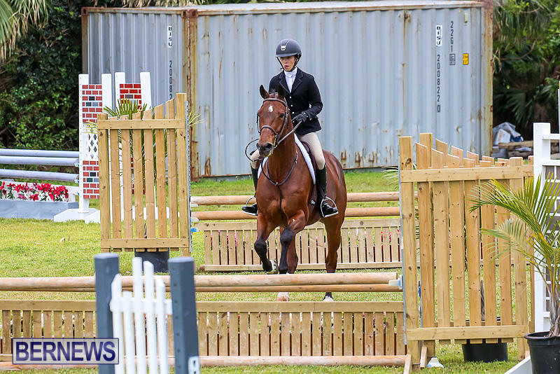 RES-Spring-Horse-Show-Series-Bermuda-March-11-2017-87