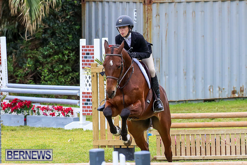 RES-Spring-Horse-Show-Series-Bermuda-March-11-2017-88