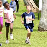 Round The Grounds Bermuda March 12 2017 (1)