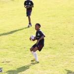 Rugby Bermuda March 8 2017 (2)