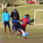 Rugby Bermuda March 8 2017 (31)